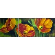 Картина 30х90 «Огненный мак на зел. траве» Набор из 3-х картин