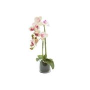 Декор.цветы Орхидея св.розовая в стекл.вазе