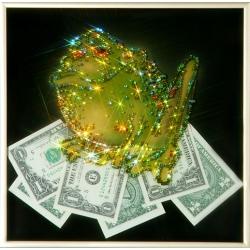 Жаба с долларами