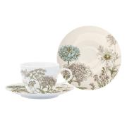Чашка с блюдцем Ботаника (бежевая) без инд.упаковки