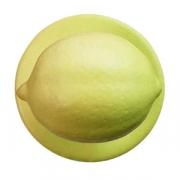 Пукли «Лимон» [12шт], пластик, желт.