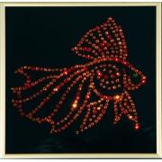 Золотая рыбка Color
