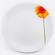 Блюдо круглое 31см «Гербера»