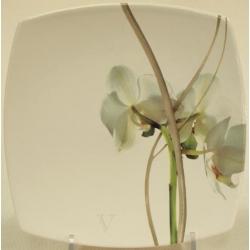 Десертная тарелка 21см «Орхидея»