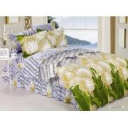 Комплект пос. белье ARYA сатин с одеялом и юб. 200х220 ELENORA