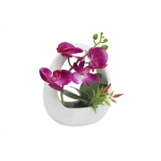 Декоративные цветы Орхидея тём.сиреневая в керам.вазе