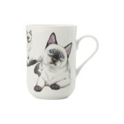 Кружка Сиамская кошка в подарочной упаковке