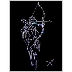 Знак зодиака - Стрелец (девушка),25х25 см,752 кристалла