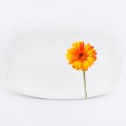 Блюдо прямоугольное 30,5 см «Гербера»