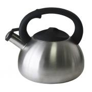 Чайник 3,8 л механический клапан сатин