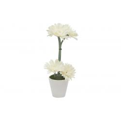 Декор.цветы Герберы белые в керам.вазе