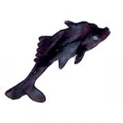 Форма конд. «Рыба», сталь нерж., H=58,L=72мм