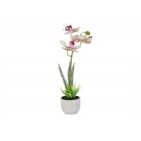 Декоративные цветы Орхидея бело-сиреневая в керамической вазе