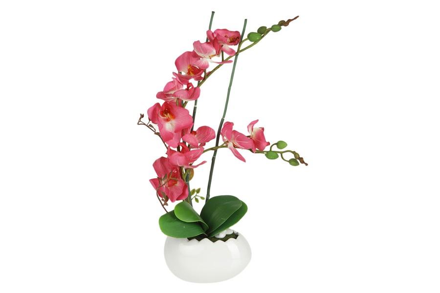 Декоративные цветы Орхидея бордо в керамической вазе (Dream Garden)
